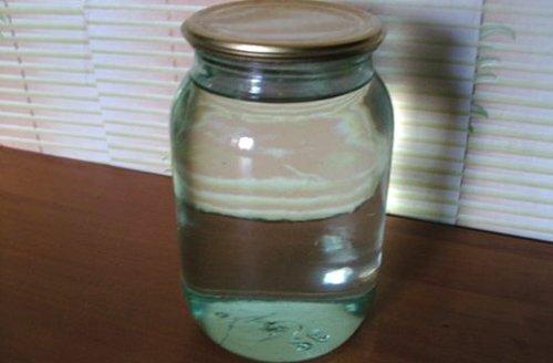 Как заготовить березовый сок на зиму